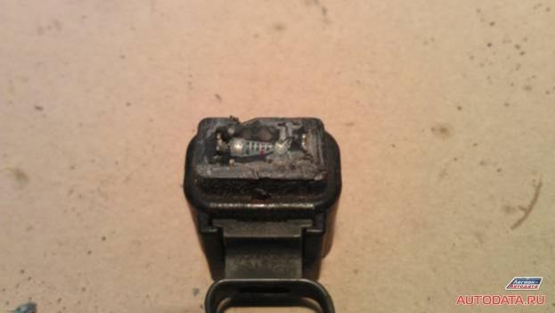 Внутри находится обычный резистор мощностью рассеяния около 1 ватт.